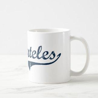 Diseño clásico de Skaneateles Nueva York Taza De Café