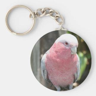 Diseño color de rosa de la fotografía del Cockatoo Llavero Redondo Tipo Pin