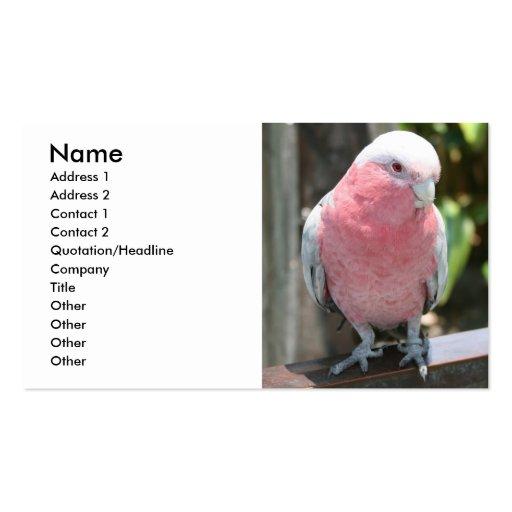 Diseño color de rosa de la fotografía del Cockatoo Tarjetas De Visita