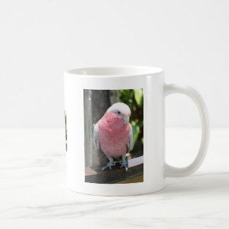 Diseño color de rosa de la fotografía del Cockatoo Tazas De Café