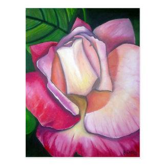 Diseño color de rosa de la pintura al óleo de Juan Tarjeta Postal