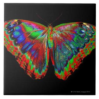 Diseño colorido de la mariposa contra el contexto  azulejo cuadrado grande