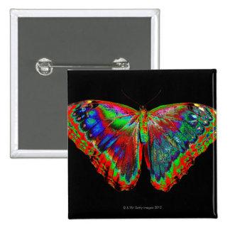 Diseño colorido de la mariposa contra el contexto pin cuadrado