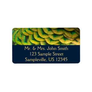 Diseño colorido de la naturaleza de las plumas II Etiquetas De Dirección