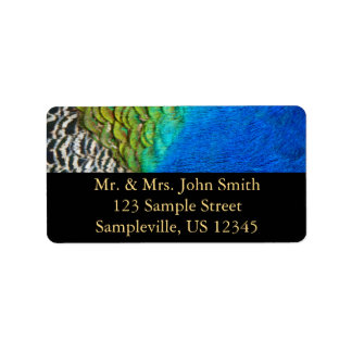 Diseño colorido de la naturaleza de las plumas IV Etiquetas De Dirección