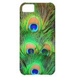 Diseño colorido de la pluma del pavo real impresio