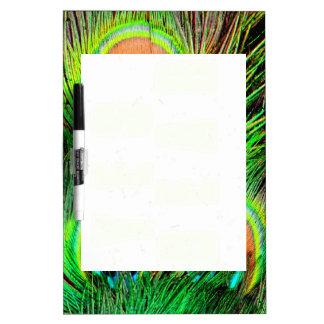Diseño colorido de la pluma del pavo real impresio tableros blancos