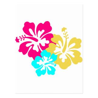 Diseño colorido del hibisco postales