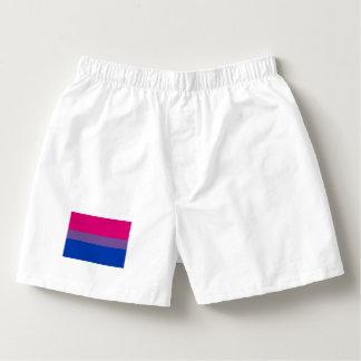Diseño completo de la bandera bisexual del orgullo calzoncillos