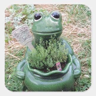 Diseño conseguido de la foto del jardín de hierbas pegatina cuadrada