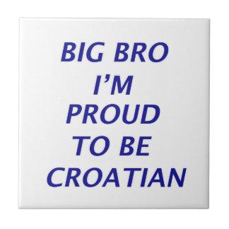 Diseño croata azulejo cuadrado pequeño