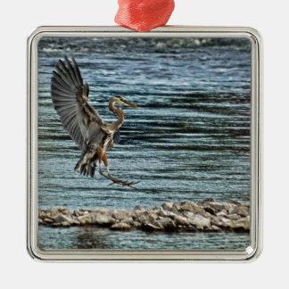 Diseño de aterrizaje de Birdlover de la fauna de l Adornos
