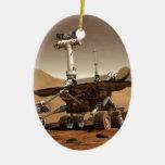 Diseño de espacio del vagabundo de marcha adorno ovalado de cerámica