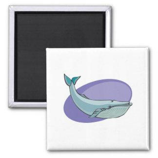 diseño de la ballena azul imán cuadrado