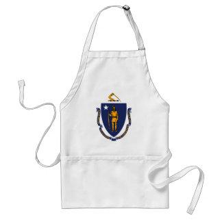 Diseño de la bandera del estado de Massachusetts Delantal