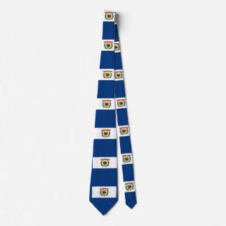Diseño de la bandera del estado de Virginia Corbatas Personalizadas