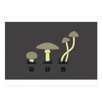 Diseño de la clasificación de la seta - GeekShirts Tarjetas Postales