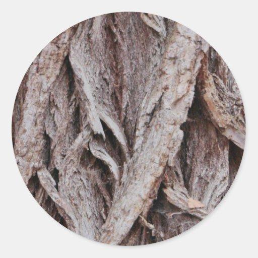 Diseño de la corteza de árbol pegatina redonda