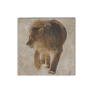 Diseño de la foto de la fauna del león de Marozi Imán De Piedra