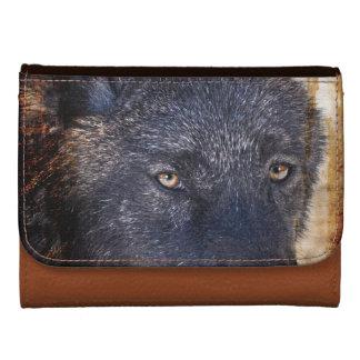 Diseño de la foto de la fauna del lobo gris