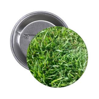 Diseño de la foto de la hierba pins