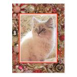 Diseño de la foto de la joyería del vintage del am tarjeta postal