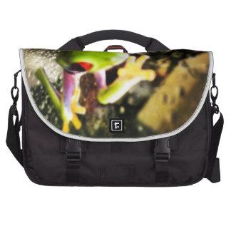 Diseño de la foto de la rana arbórea bolsas para portatil