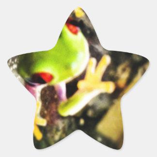 Diseño de la foto de la rana arbórea colcomanias forma de estrellaes personalizadas