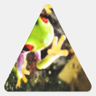 Diseño de la foto de la rana arbórea calcomanía trianguloada