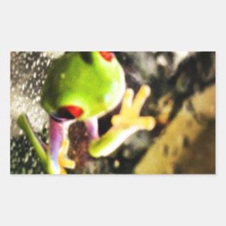 Diseño de la foto de la rana arbórea rectangular pegatinas