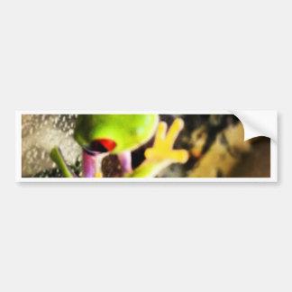 Diseño de la foto de la rana arbórea pegatina para auto