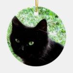 Diseño de la foto del gato negro de Halloween Ornamentos De Navidad