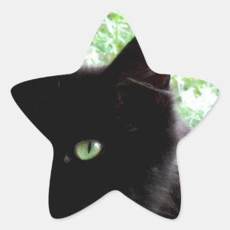 Diseño de la foto del gato negro de Halloween Colcomanias Forma De Estrella Personalizadas