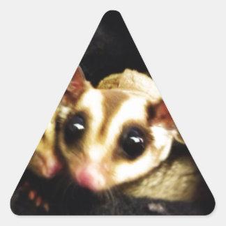 diseño de la foto del planeador del azúcar pegatina triangular