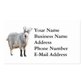 Diseño de la fotografía de la cabra tarjetas de visita