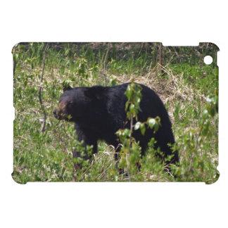 Diseño de la fotografía de la fauna del oso negro iPad mini fundas