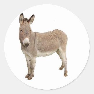 Diseño de la fotografía del burro pegatina redonda