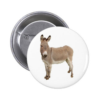 Diseño de la fotografía del burro pins