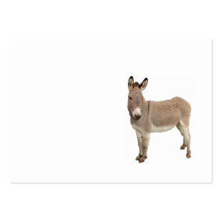 Diseño de la fotografía del burro plantilla de tarjeta de visita
