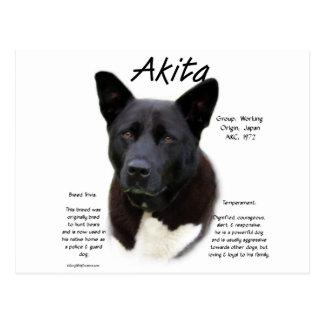Diseño de la historia de Akita (negro) Postal