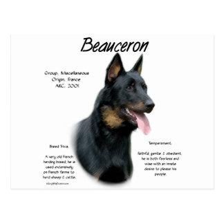Diseño de la historia de Beauceron Tarjetas Postales