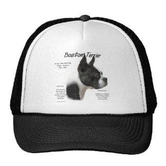 Diseño de la historia de Boston Terrier Gorros