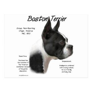 Diseño de la historia de Boston Terrier Postales