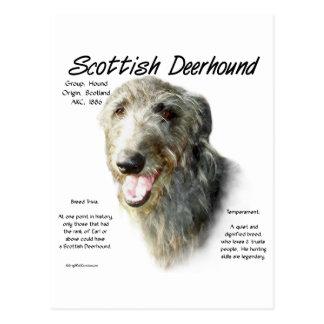 Diseño de la historia de Deerhound del escocés Tarjeta Postal