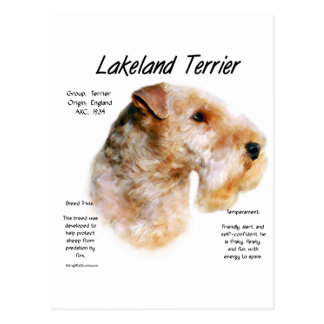 Diseño de la historia de Lakeland Terrier Postales