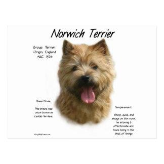 Diseño de la historia de Norwich Terrier Postal