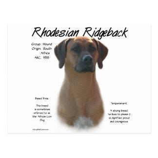 Diseño de la historia de Rhodesian Ridgeback Postales