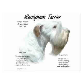 Diseño de la historia de Sealyham Terrier Postales
