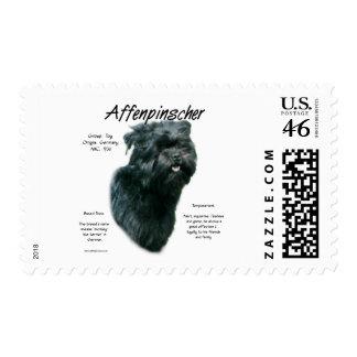 Diseño de la historia del Affenpinscher