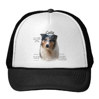 Diseño de la historia del collie (merle liso) gorras de camionero